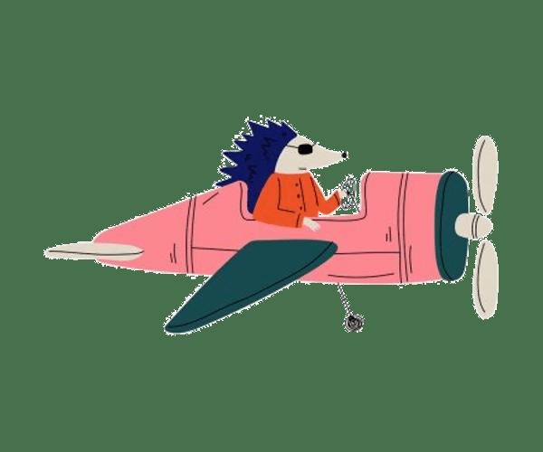 sün repülő